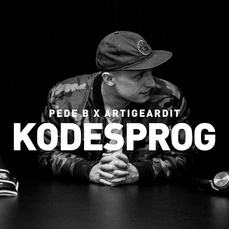 KODESPROG_ArtWork